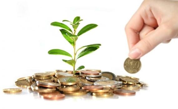 Минимальный размер уставного капитала ООО
