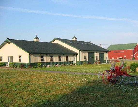 Выбор направления для фермерства как бизнес идеи