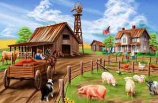 Бизнес-идеяживотноводческой фермы