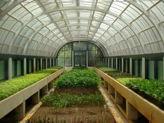 Бизнес идеи фермерского хозяйства
