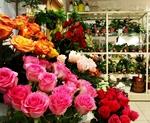 Как составить бизнес план магазина цветов