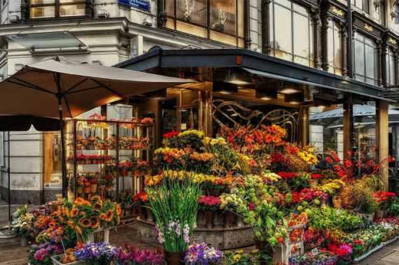Образец бизнес плана магазина цветов
