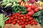 Как написать бизнес план для открытия овощехранилища