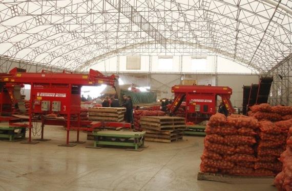 Организация работы овощехранилища