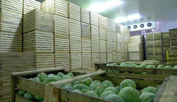 Оборудование овощехранилища