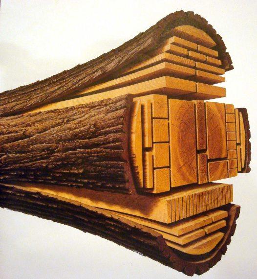 Технология производства пиломатериалов