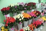 Как составить бизнес план магазина цветы