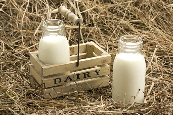 Бизнес план открытия молочной фермы