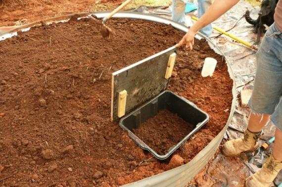 Как выращивать червя в домашних условиях