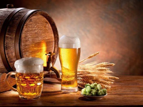 Составление бизнес план магазина по продаже разливного пива