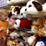 Порядок составления бизнес плана магазина игрушек