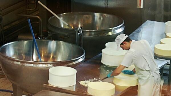 Какое оборудование необходимо для производства сыра