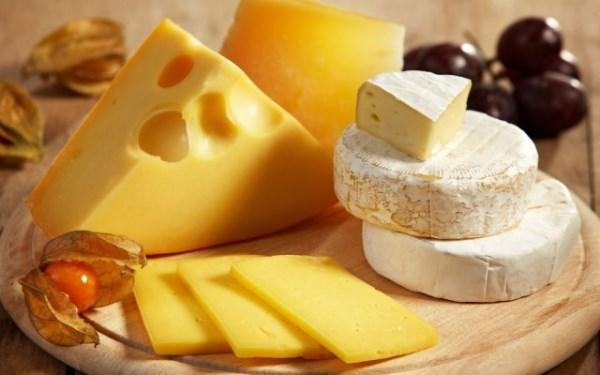 Что понадобится для открытия бизнеса по производству сыра на базе мини цеха