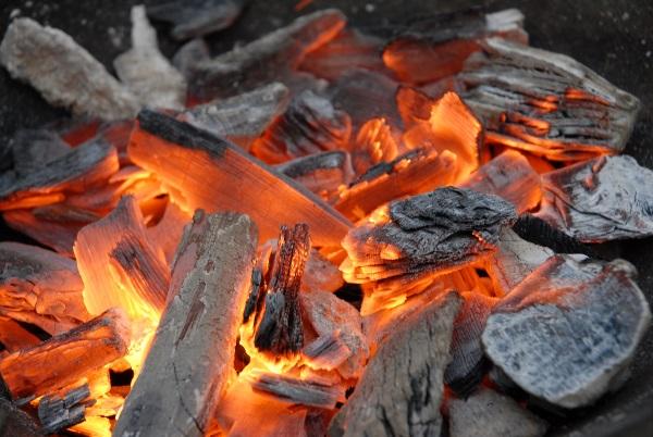 Как создать бизнес на производстве древесного угля