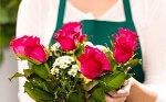 Можно ли открыть интернет магазин цветов без бизнес-плана