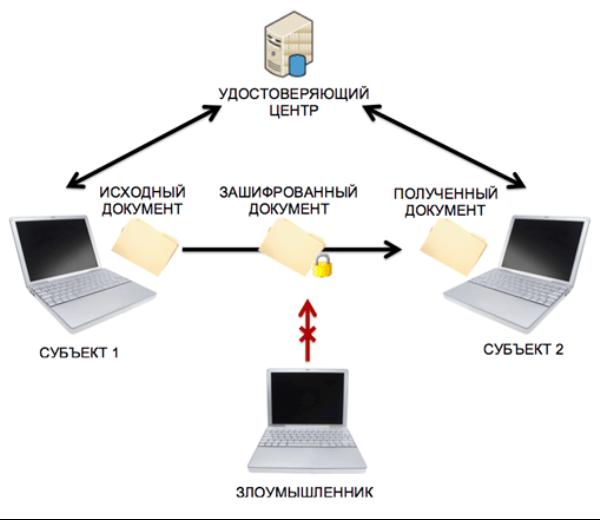 Схема действия ЭЦП для юридического лица